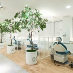 arquitetura-cores-clinica-small-tree-dental